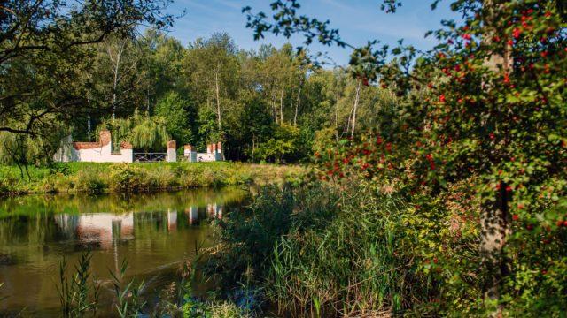 Bytomskie parki przeszły metamorfozę