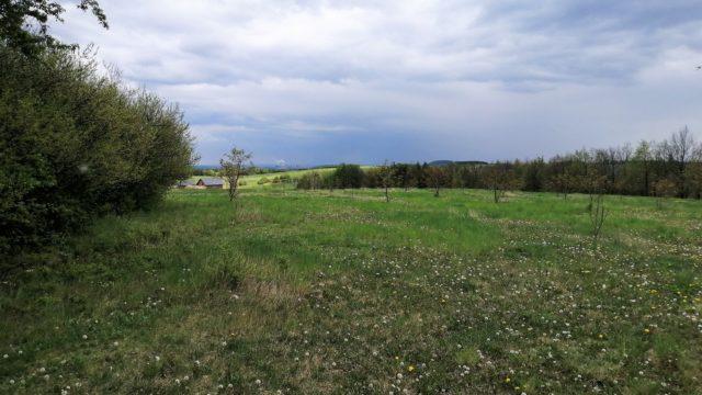 Góra Buczyna, Rogoźnik
