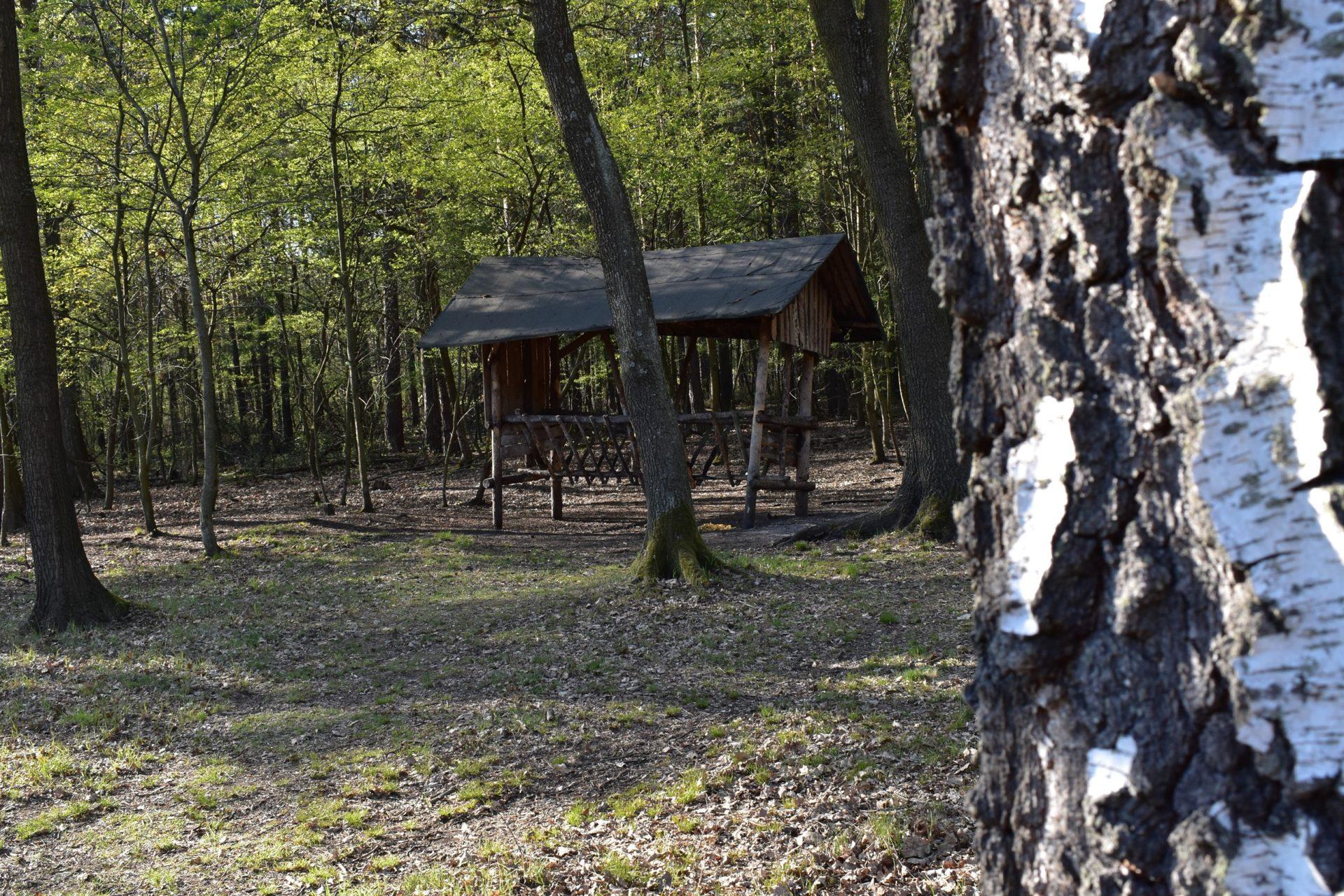 Rezerwat przyrody Ochojec