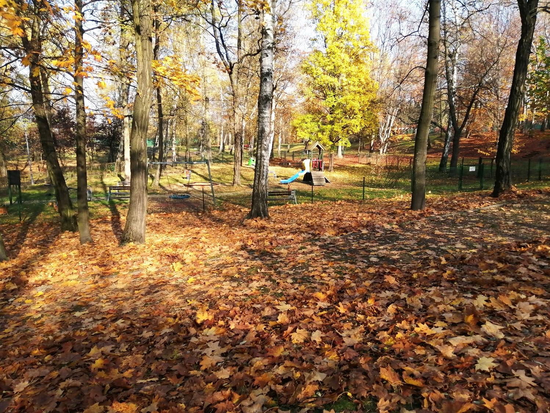 Park Wełnowiecki