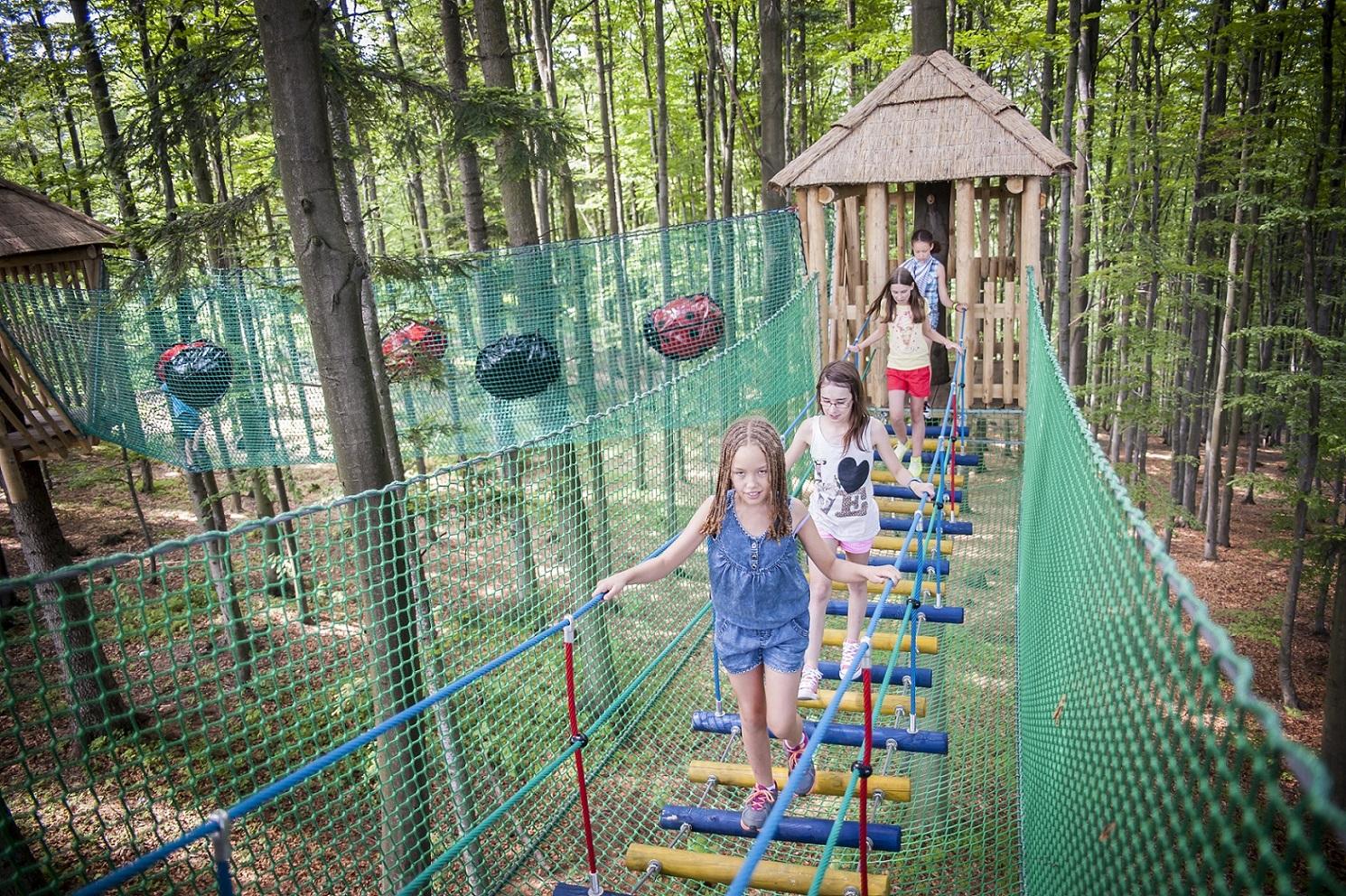 Leśny Park Atrakcji Dimbo